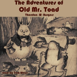 Artwork Adventures of Old Mr. Toad