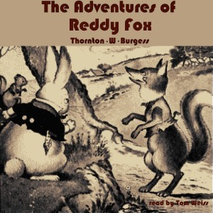 Artwork The Adventures of Reddy Fox