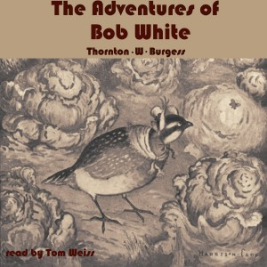 The Adventures of Bob White cover