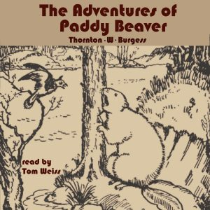The Adventures of Paddy Beaver by Thornton W. Burgess