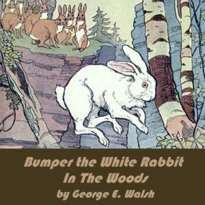 Bumper the White Rabbit in the Woods