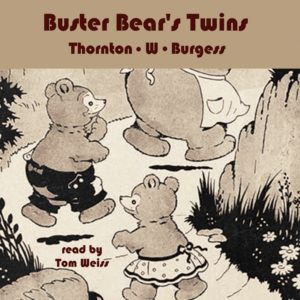 Buster Bear's Twins link