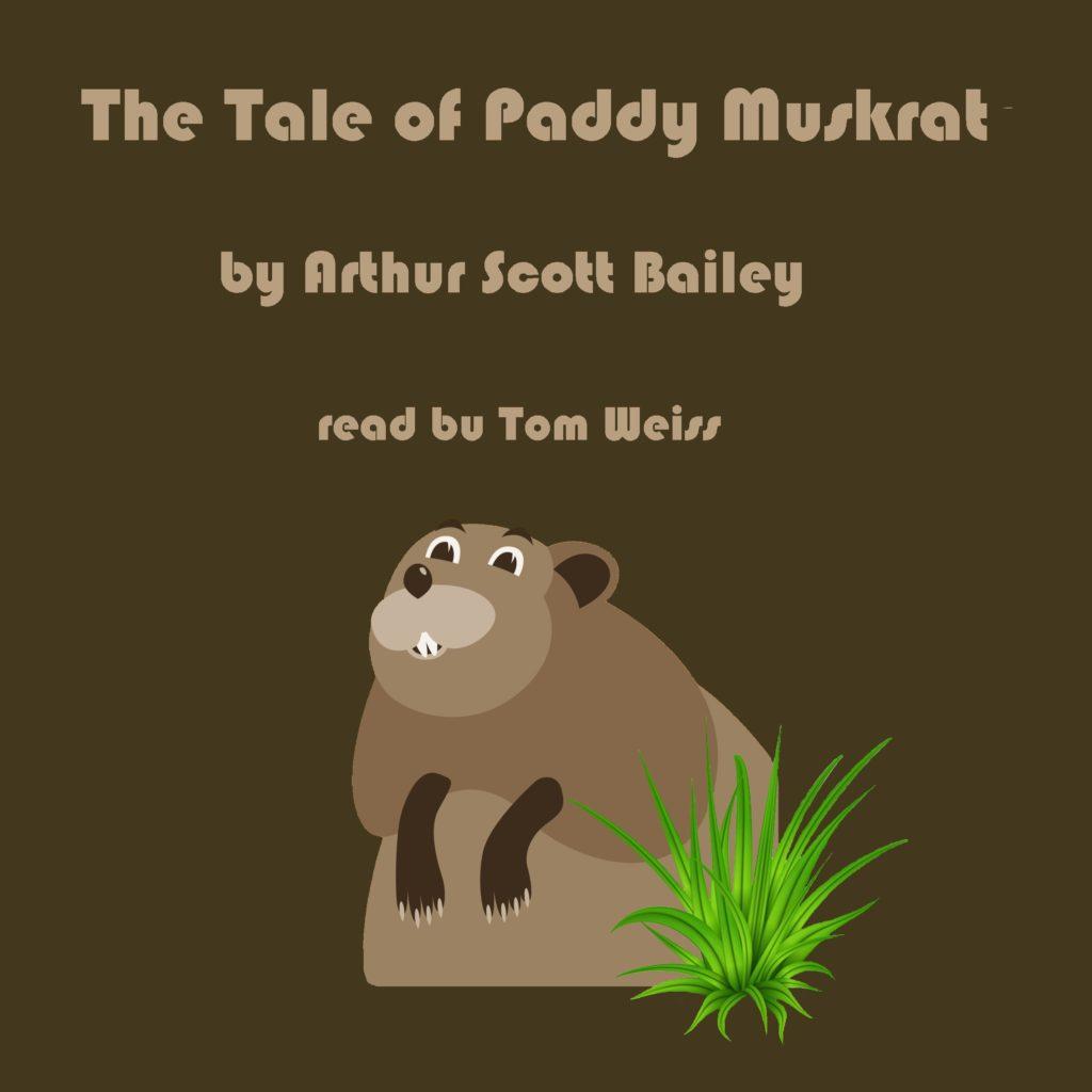 The Tale of Paddy Muskrat by Arthur Scott Bailey