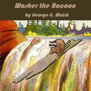 Washer the Raccoon by George Walsh